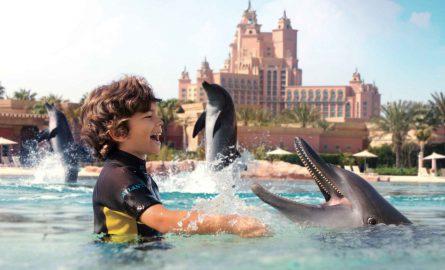 Delfin-Erlebnis in Dubai im Wasserpark