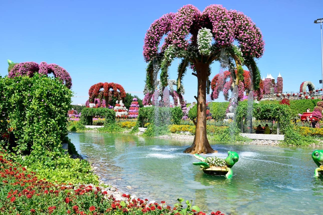 Dubai Miracle Garden Butterfly Garden Tickets Infos