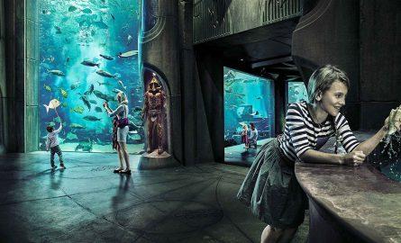 Lost Chambers Aquarium