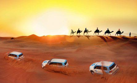 Wüstensafari mit Kamelreiten in Dubai