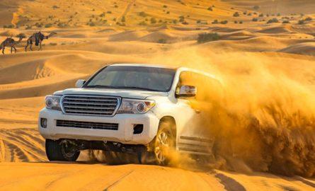 Wüstensafari in Dubai günstig online buchen