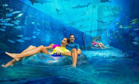 Spannende Rutsche durchquert Hai-Becken im Aquaventure Wasserpark