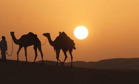 Zu Dubais Attraktionen gehören zum Beispiel Wüstensafaris